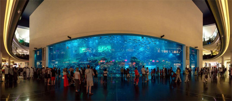 aquarium cropped Dubai Tour 2016